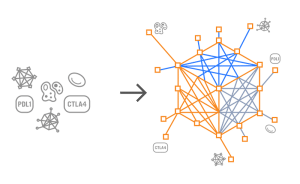 Predictive Immune Modeling